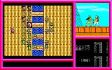 Pink Shock Pirates PC-98 Note the expressive combat animation :)