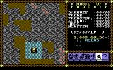 Magic of Endoria Commodore 64 Main in-game view. Choose actions by selecting icons with joystick.