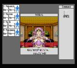 Phantasie IV: The Birth of Heroes MSX Visiting the mystic