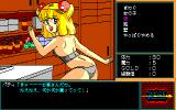 Rance: Hikari o Motomete PC-88 This is a very... interesting item shop