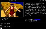 Ring Quest PC-88 Nothing against feminism, really