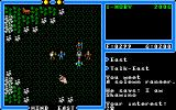 Ultima IV: Quest of the Avatar Amiga Shamino is the main NPC ranger. If you start as any other class you can recruit him to your party.