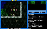 Ultima IV: Quest of the Avatar Amiga Iolo the jester joins my party. One NPC of every class aside from your own can join your party.