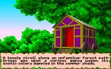 Ultima VI: The False Prophet Amiga The gypsy will help you make your character.