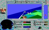 DragonStrike Amiga Attacking enemy dragons