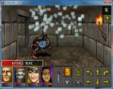 Undercroft Windows Fighting is done in a turn based manner, first your party and then the enemy. You attack with physical strikes, special abilities and spells.