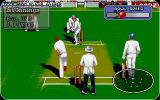 Allan Border's Cricket Atari ST And the ball is off