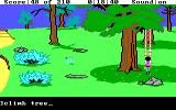 King's Quest III: To Heir is Human DOS Looks like something is up that tree... (EGA/Tandy)