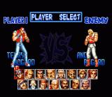 Fatal Fury Special SNES Select one of 15 fighters. Of course the Bogard brothers are present again