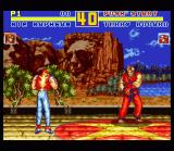 Fatal Fury Special SNES Trademark Fatal Fury: Terry Bogard and Kim Kaphwan standing on two different planes