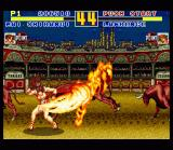 Fatal Fury Special SNES Hot babe: Mai Shiranui sets Lawrence on fire!