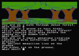 Jewels of Darkness Atari 8-bit Adventure Quest: finding some items in the forest