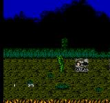 Swamp Thing NES Giant skulls are never a good sign