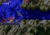 Ecco the Dolphin Genesis You have to be careful in cave areas, since your oxygen is limited.