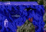 Ecco the Dolphin Genesis Hope the orca will know something.