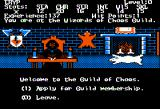 Alternate Reality: The Dungeon Apple II Guild of Chaos