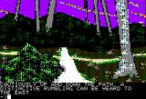 Ring Quest Apple II Through the forest