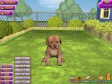 Puppy Luv: A New Breed Windows The gamer goes to the Care menu. Food is there on the top of the new list