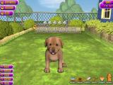 Puppy Luv: A New Breed Windows To train a puppy the gamer must have an adequate supply of bribes / treats.
