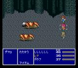 Final Fantasy V SNES Battle in a dungeon. It's Lenna's turn. Dig Galuf's default outfit