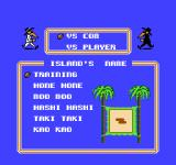 Spy vs. Spy: The Island Caper NES Main menu