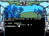 Dragon Blade TRS-80 CoCo Starting out