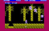 Ghosts 'N Goblins PC-88 Ghost knights