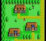 Chaos World NES In a town