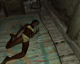 "The Elder Scrolls V: Skyrim Windows My ""hero"" just killed this poor innocent woman in her own bed, took her clothes, and moved her body onto the carpet. Jail is nearing"
