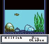 Legend of the River King GB Game Boy Color Fish and decoration