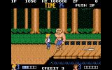 Double Dragon Atari ST If I could just make it to that bat...