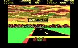Pole Position DOS Game Over (CGA)