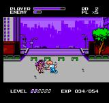 Mighty Final Fight NES She's meaner than she looks