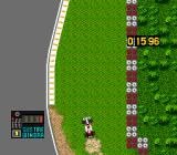 F1 Circus Special: Pole to Win TurboGrafx CD Stuck in grass