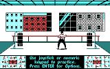 Bruce Lee Lives DOS Begin the Training (CGA)