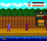 Iga Ninden: Gaō TurboGrafx CD Evil ninjas try to stop me