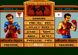 Panza Kick Boxing TurboGrafx CD Match-up
