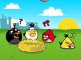 Angry Birds iPad Chapter introduction; the birds are confused and angry!