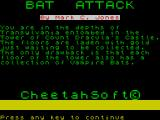 3D Bat Attack ZX Spectrum Another title screen plus instructions