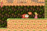 Super Mario Advance Game Boy Advance Throw the big Shy Guy and he gives you a heart