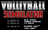 Volleyball Simulator DOS Title screen and game credits