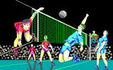 Volleyball Simulator DOS Splash screen