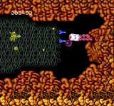 Abadox: The Deadly Inner War NES A strange creature at the back of the mouth