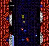 Abadox: The Deadly Inner War NES Flying vertically down the throat