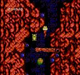 Abadox: The Deadly Inner War NES Ewwwwwww.