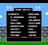 Tecmo World Cup Soccer NES Team select