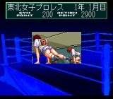 Wrestle Angels: Double Impact TurboGrafx CD Training