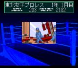Wrestle Angels: Double Impact TurboGrafx CD Renovating the gym