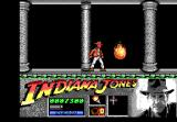 Indiana Jones and the Last Crusade: The Action Game DOS Level 2 - Watch out for the flame balls dropping from the ceiling.