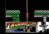 Indiana Jones and the Last Crusade: The Action Game DOS Level 2 - Indy climbs a rope down further into the catacombs.